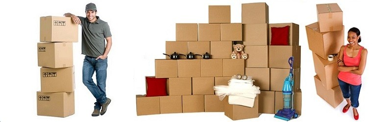 Packers and Movers Bhadrak